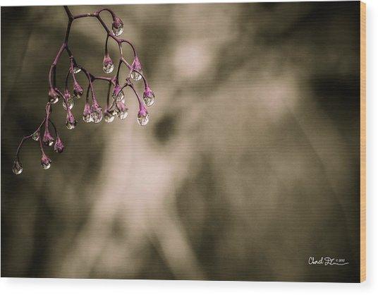 Dew Berries Wood Print
