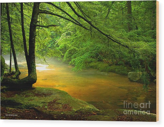 Diana's Bath Stream Wood Print