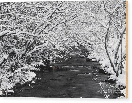 Dick's Creek Snow 2014 Wood Print