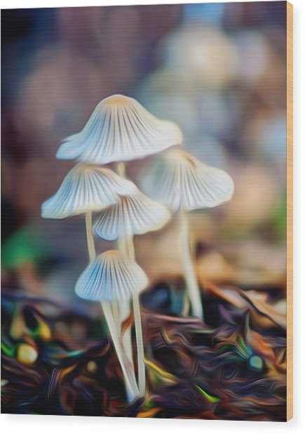 Digital Art Mushrooms Wood Print by Tammy Smith