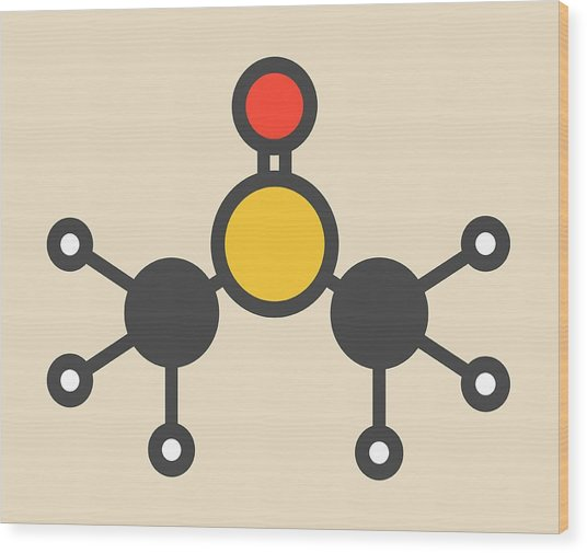 Dimethyl Sulfoxide Molecule Wood Print by Molekuul