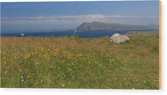 Dingle Wildflowers Wood Print