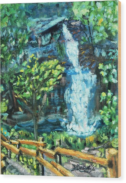 Dingman Falls Eastern Pennsylvania Wood Print