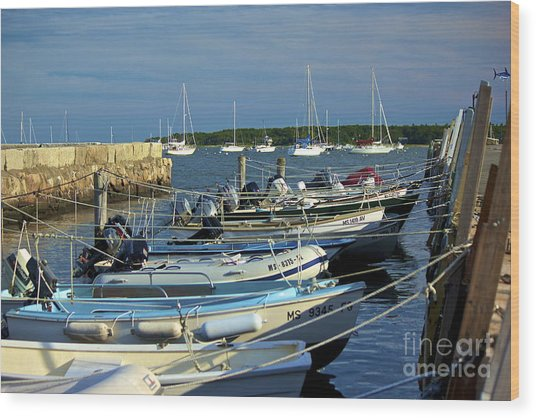 Dingy's Of Mattapoisett  Wood Print by Amazing Jules