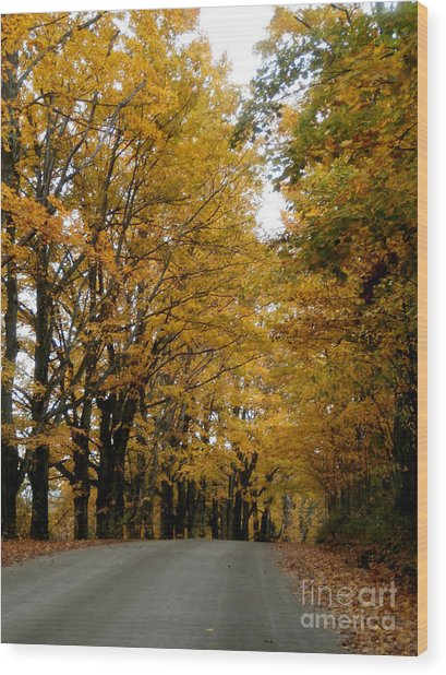 Dirt Road Colors Wood Print by Steven Valkenberg