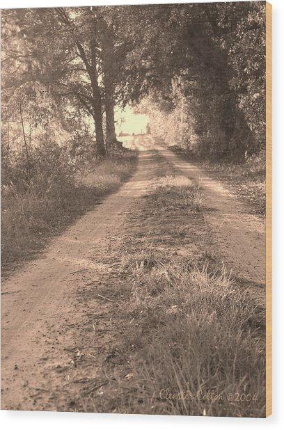 Dirt Road In Moultrie Georgia Wood Print