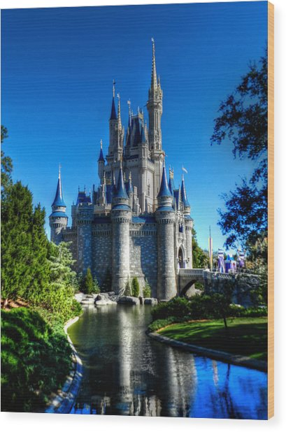 Disney Hdr 002 Wood Print