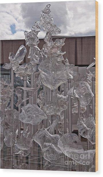 Display Of Glass Art Wood Print