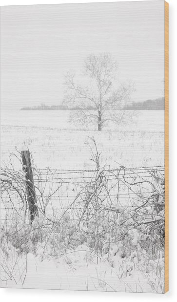 Distant Tree Wood Print