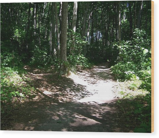 Diverging Path In The Woods Wood Print