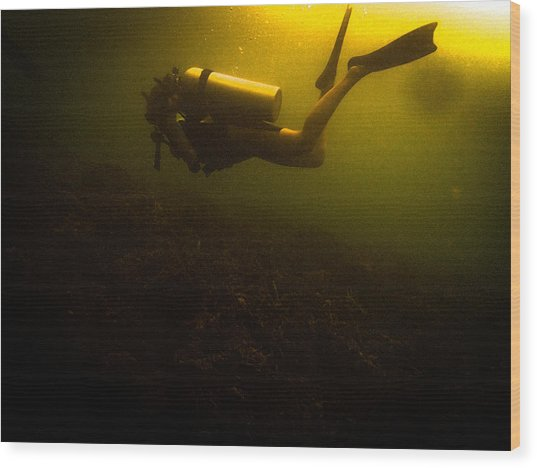 Diving Dark Wood Print