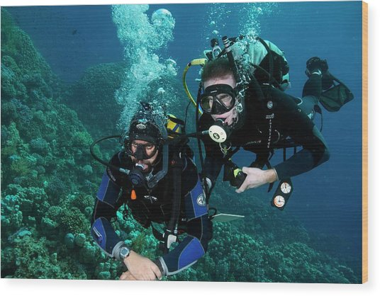 Diving Student And Instructor Wood Print