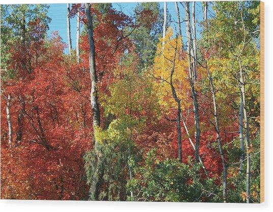 Dixie Autumn Wood Print