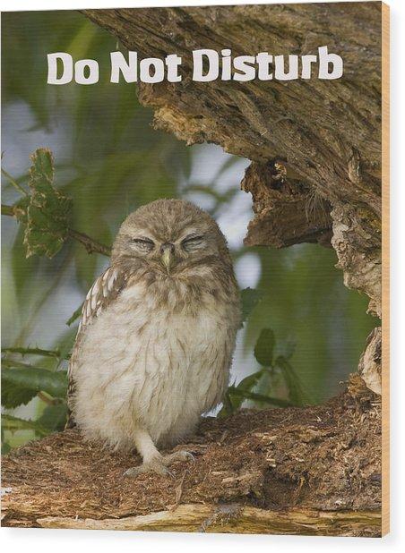 Do Not Disturb Wood Print