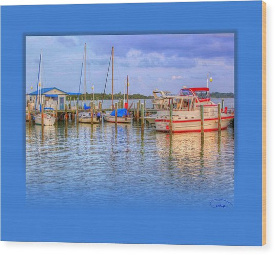 Docked For The Day Wood Print by Tammy Thompson