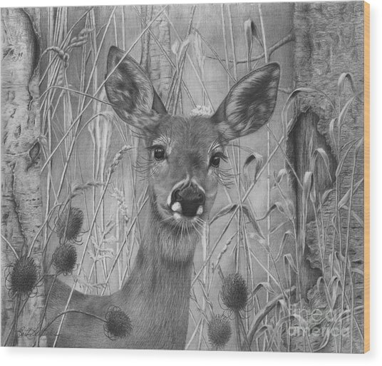 Doe Pretty Wood Print