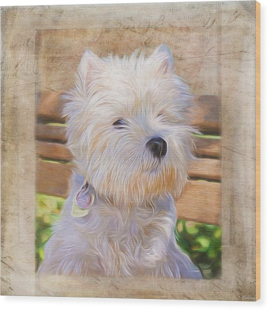 Dog Art - Just One Look Wood Print