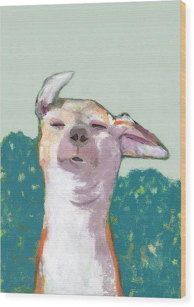 Dog In Wind Wood Print