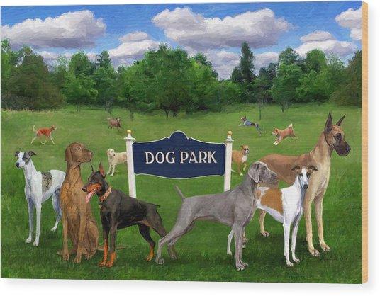 Dog Park Wood Print