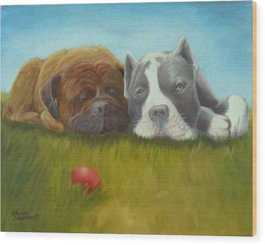 Dog Tired Wood Print by Sharon Casavant