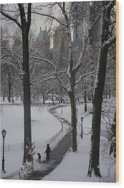 Dog Walking In A Snowy Central Park Wood Print