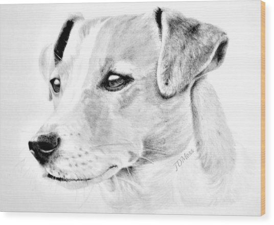 Doggie Wood Print by Janet Moss