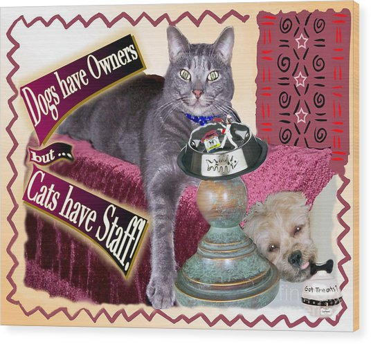 Dogs Have Owners - Cats Have Staff Wood Print
