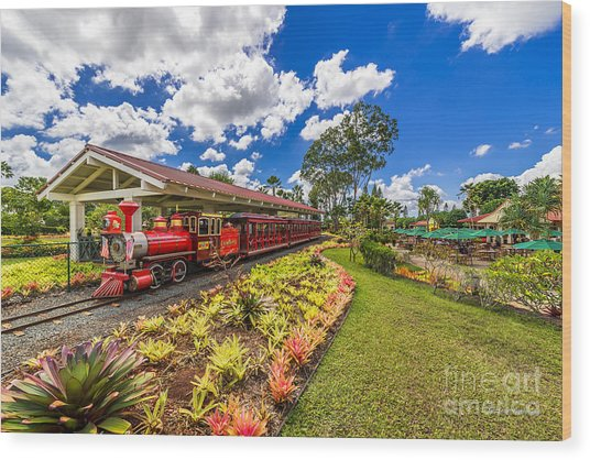 Dole Plantation Train Wood Print