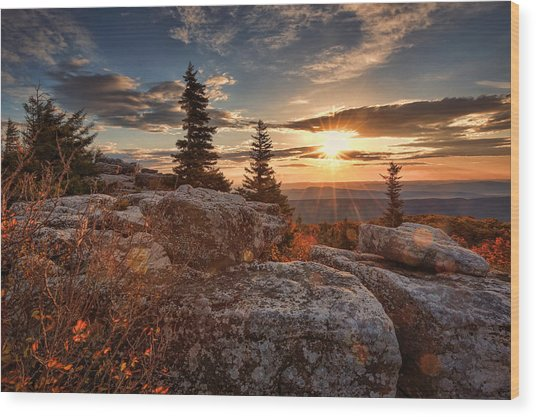 Dolly Sods Morning Wood Print