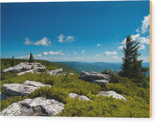 Dolly Sods Wood Print