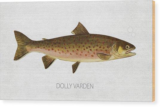 Dolly Varden Wood Print