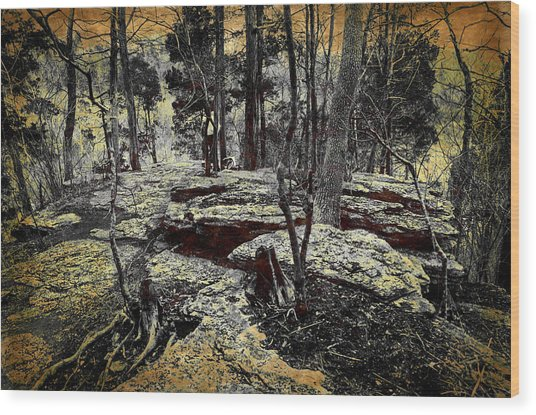 Dolomite Cliff Wood Print