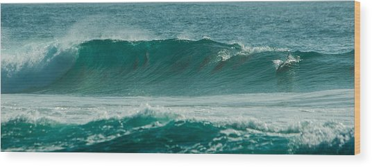 Dolphins In Wave 10 Wood Print