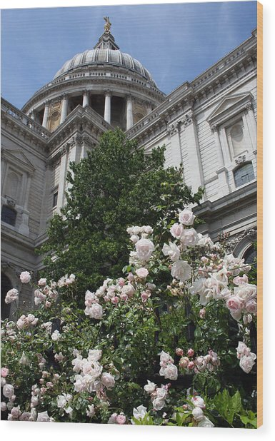 Dome Of St Paul's Wood Print by Stephen Norris