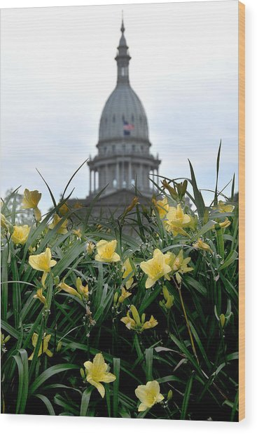 Dome Through The Daffodils Wood Print