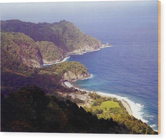 Dominica Coast Line Wood Print