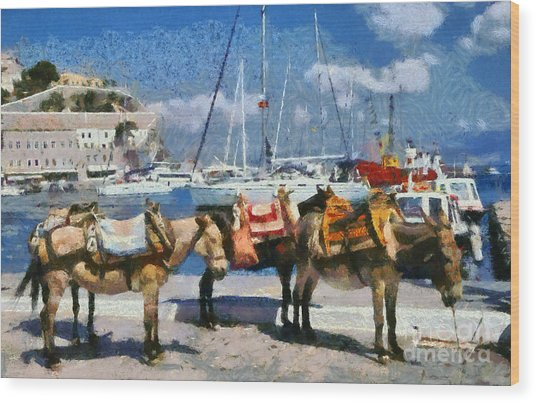 Donkeys Waiting For A Ride Wood Print
