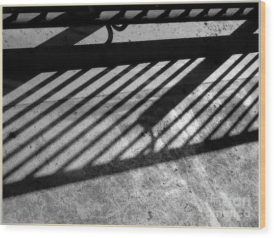 Wood Print featuring the photograph Don't Fence Me In by Luc Van de Steeg