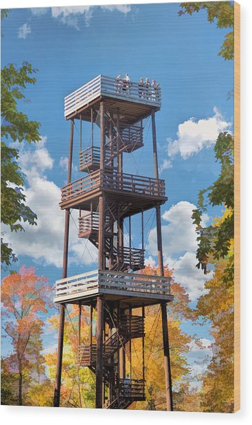 Door County Eagle Tower Peninsula State Park Wood Print