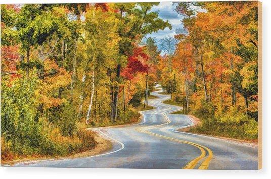 Door County Road To Northport In Autumn Wood Print