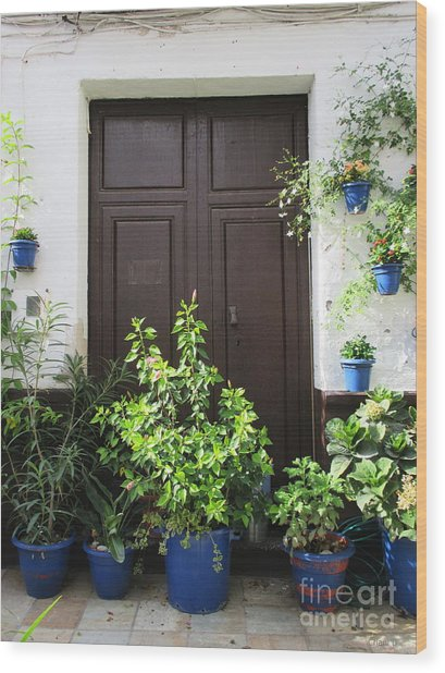 Door In Almogia Wood Print