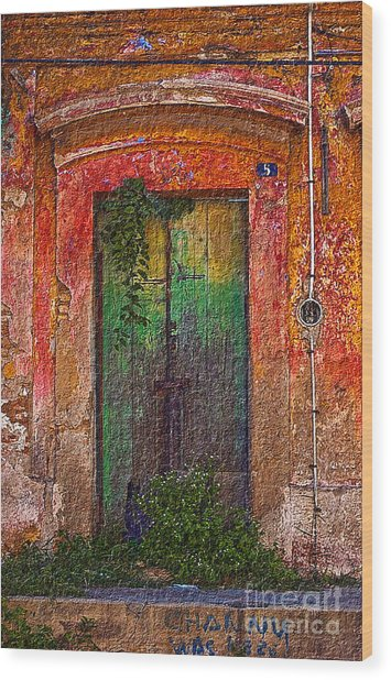 Door Series - Green Wood Print