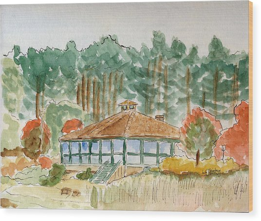 Dorrs Pondhouse Wood Print
