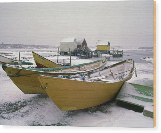 Dorys In Winter At Blue Rocks Nova Scotia Wood Print