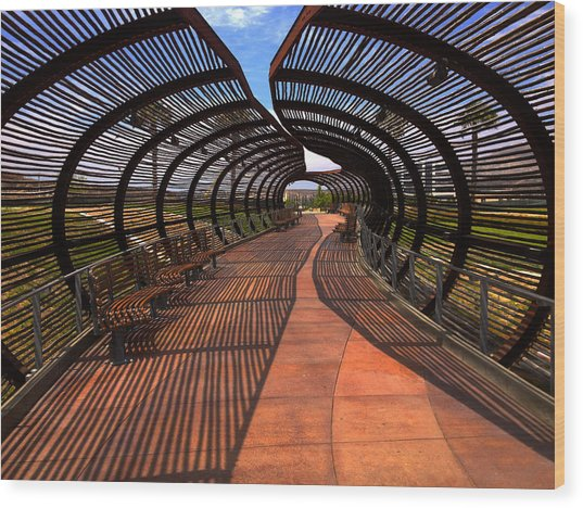Dos Lagos Tunnel Walk Wood Print
