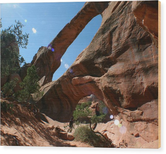 Double O Arch Wood Print