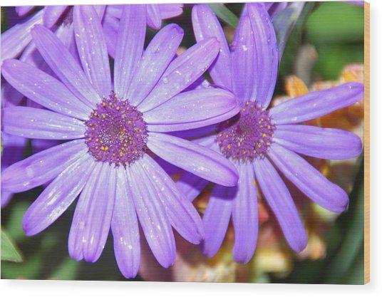 Double Purple Wood Print