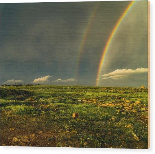 Double Rainbow Wood Print by Craig Brown
