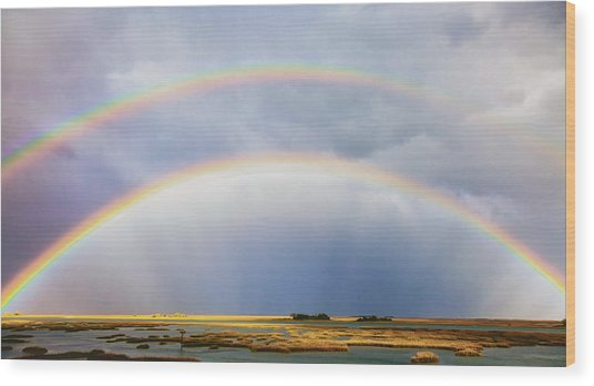 Rainbow Bridge Wood Print