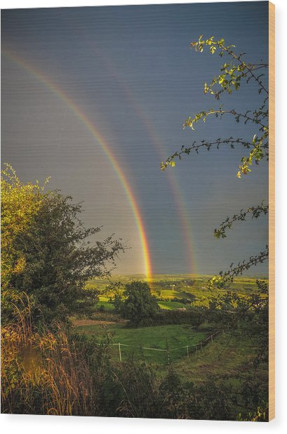 Double Rainbow Over County Clare Wood Print
